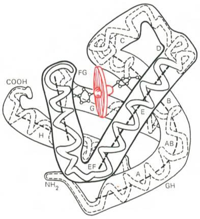 структура изображения: