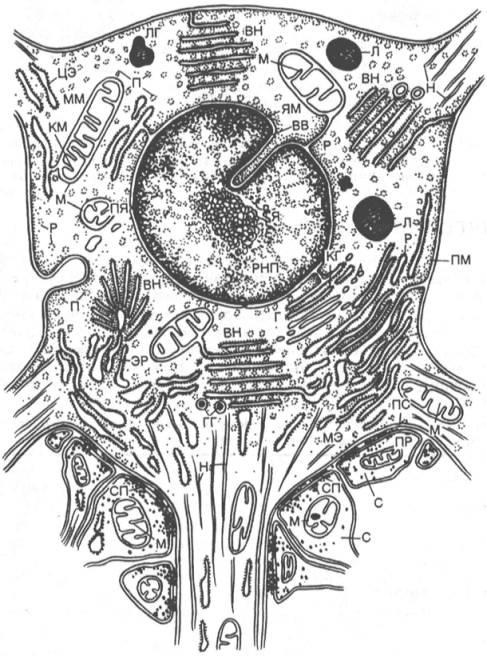 Схемы в minecraft industrial