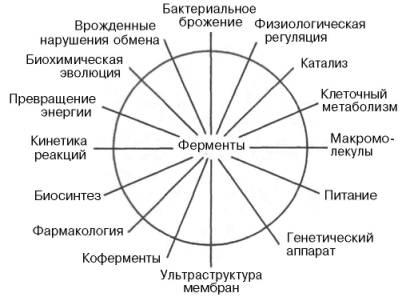 СЭТ схема ф.