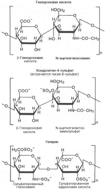Гиалуроновая кислота биохимия