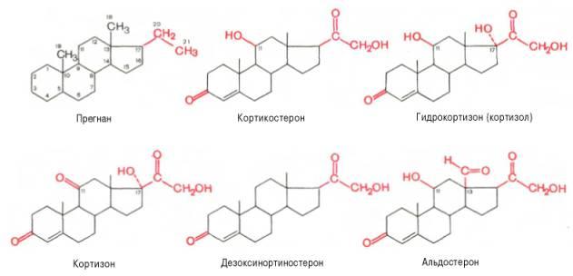 эффективная лекарство против паразитов
