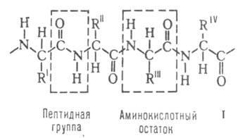 1048-9.jpg