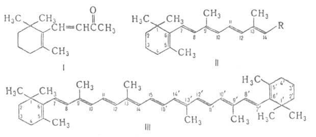 Доклад по химии витамин а 5958