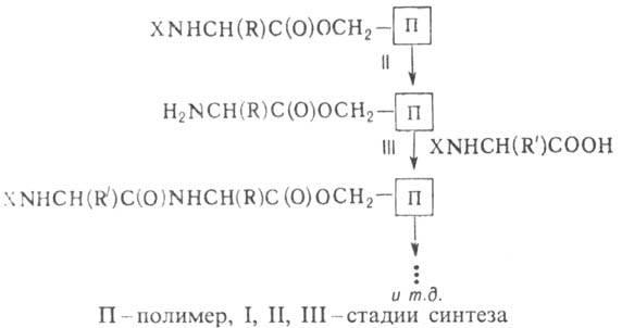 процесс пептидного синтеза