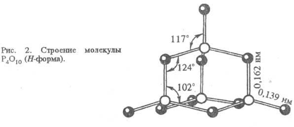 5029-79.jpg