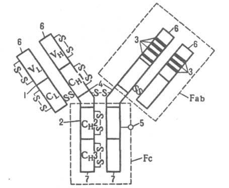принципиальная схема ваз 2112