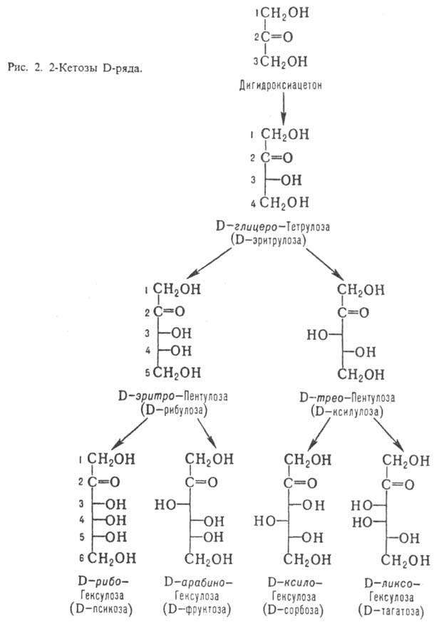 Моносахарид фото