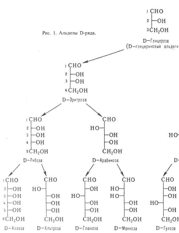 Моносахарид